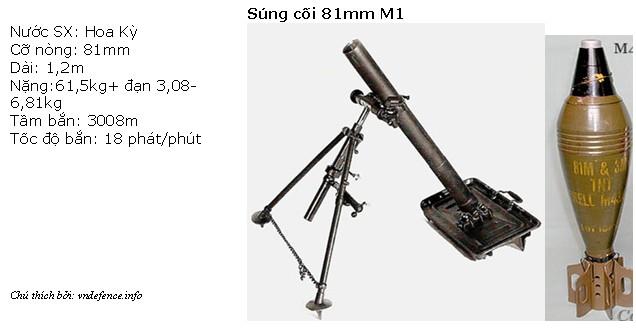 m1-81