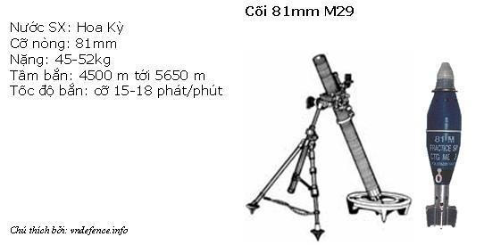 m29-81