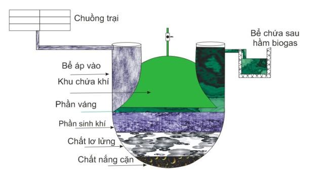Quy trình hoạt động của bể biogas bằng nhựa tái chế. Ảnh: Hạnh Nguyên -http://agriviet.com