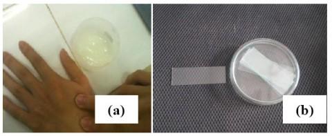 Mẫu thật (a) và mẫu mô phỏng (b)